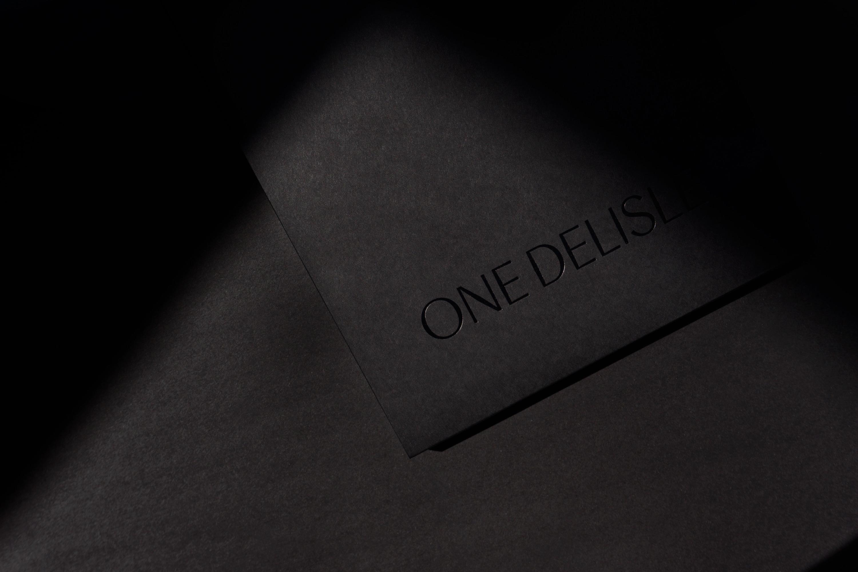 Vanderbrand_OneDelisle-22-Folder